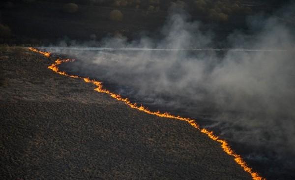 Природный пожар в зоне отчуждения ЧАЭС