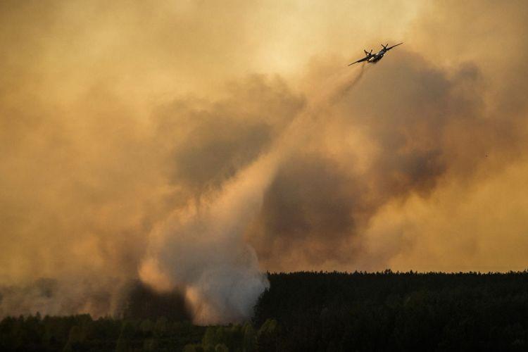 Лесной Пожар в зоне ЧАЭС